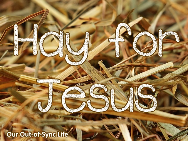 Hay for Jesus